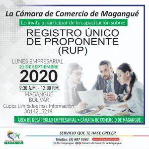 REGISTRO ÚNICO DE PROPONENTES RUP. @ cámara de comercio magangué